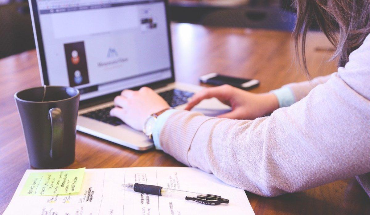 cv freelance web