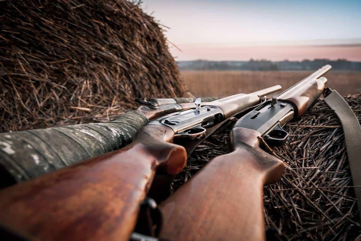 calibre fusil de chasse