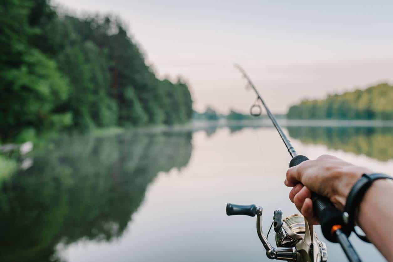 canne à pêche équipement du pêcheur